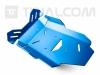 TT® - Raid engine guard plate R1250GS/ADV-LC Electric Blue